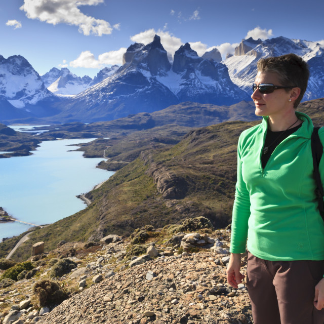 """Hiker at Condor Vista Point, Lago Pehoe and the Cordillera del Paine, Torres..."" stock image"