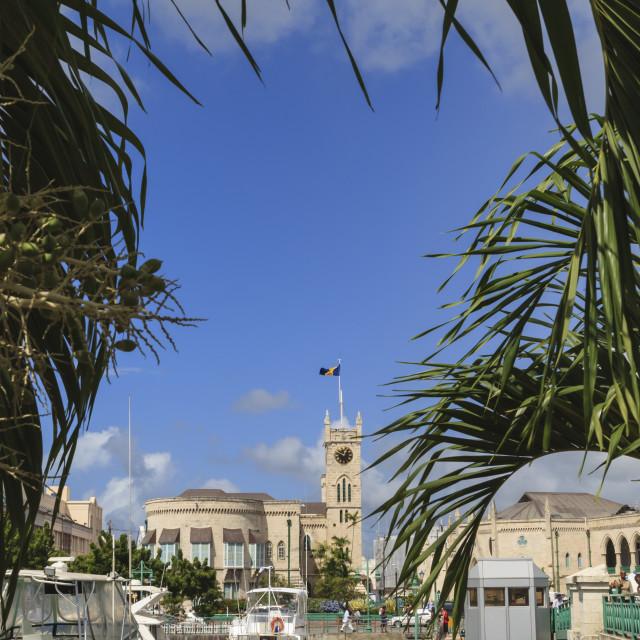 """Parliament building with Barbados flag and bridge through trees, Bridgetown,..."" stock image"