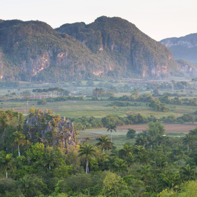 """""""The Vinales Valley, UNESCO World Heritage Site, bathed in early morning..."""" stock image"""