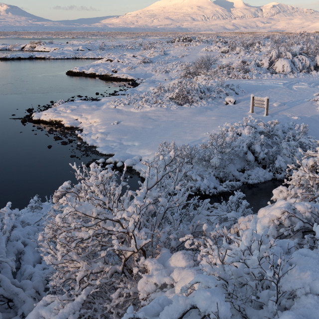 """""""View towards Pingvallavatn Lake on a clear winter's afternoon with the shore..."""" stock image"""