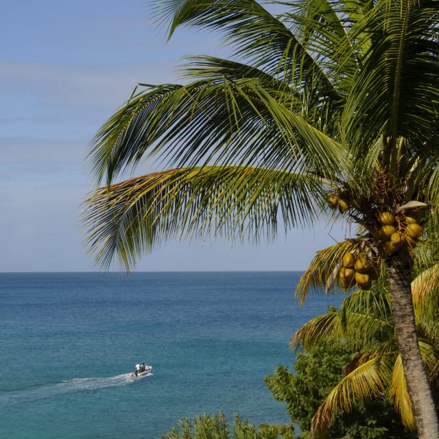 """Hawksbill Beach, Hawksbill Hotel, Antigua, Eastern Caribbean"" stock image"