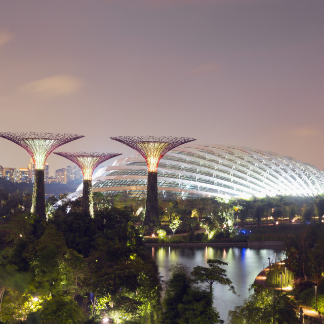 """Gardens by the Bay Cloud Forest Botanic Garden, Singapore, Southeast Asia, Asia"" stock image"
