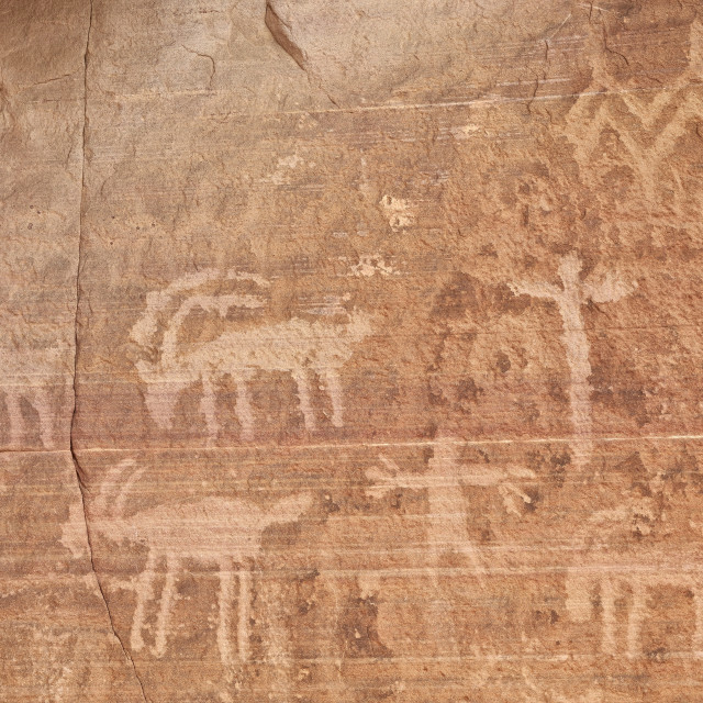 """""""Bighorn sheep, human, and geometric petroglyphs, Gold Butte, Nevada, United..."""" stock image"""