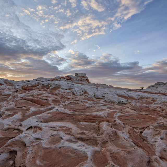 """""""Clouds at dawn over salmon and white sandstone, White Pocket, Vermilion..."""" stock image"""