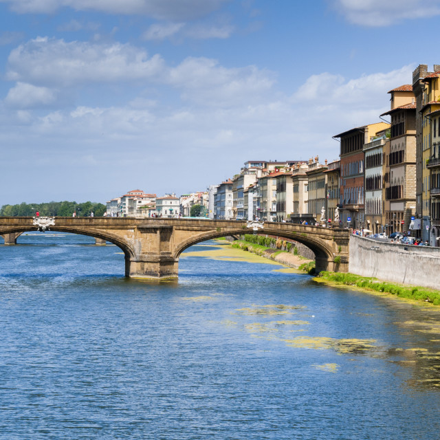 """""""Ponte Santa Trinita dating from the 16th century and the Arno River, Florence..."""" stock image"""