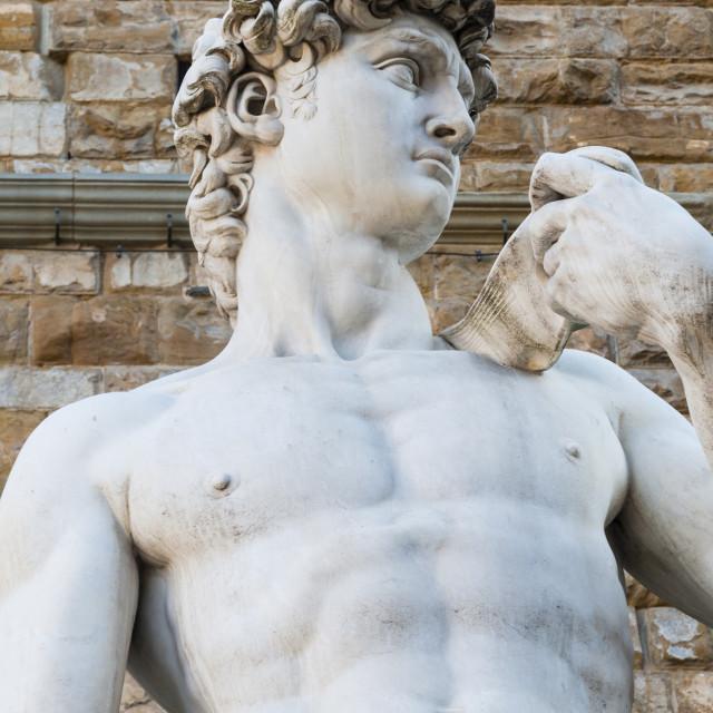 """David by Michelangelo dating from the 16th century, Piazza della Signoria,..."" stock image"