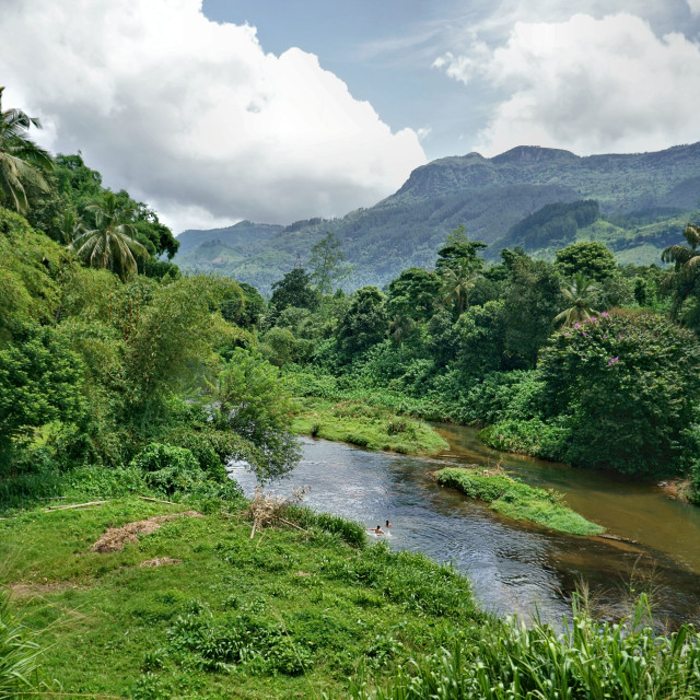 """""""River through the Sri Lanka hill country"""" stock image"""