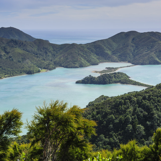 """View over the Marlborough Sounds, South Island, New Zealand, Pacific"" stock image"