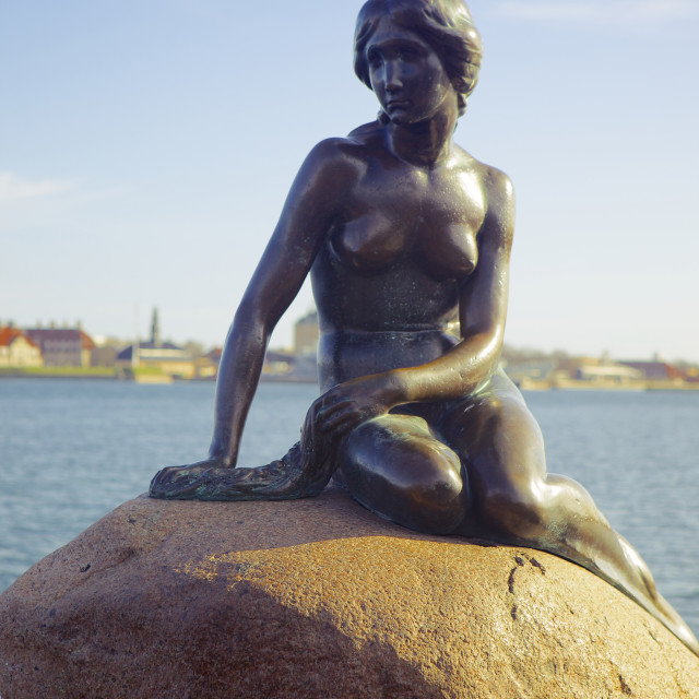 """Statue of The Little Mermaid in Copenhagen, Denmark, Scandinavia, Europe"" stock image"