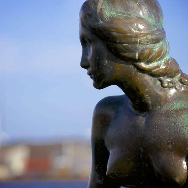 """""""Close up of the Statue of The Little Mermaid in Copenhagen, Denmark,..."""" stock image"""