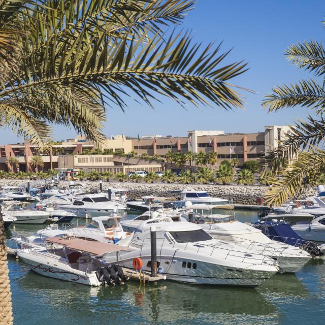 """Marina Hotel overlooking Yacht Club on Arabian Gulf Street, Salmiya, Kuwait..."" stock image"