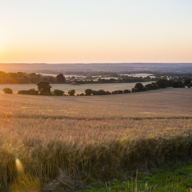 """Sunset over fields just outside Guildford, Surrey, England, United Kingdom,..."" stock image"
