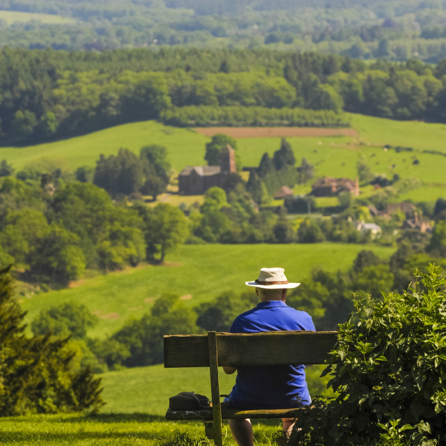 """Box Hill, North Downs, Surrey Hills, Surrey, England, United Kingdom, Europe"" stock image"