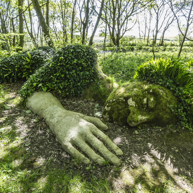 """""""A walk through the Lost Gardens of Heligan just outside Fohey, Foy, Cornwall,..."""" stock image"""