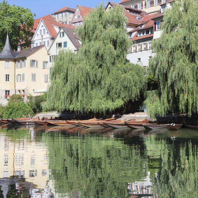 """Holderlinturm tower and Stocherkahn (punt) reflected in Neckar River,..."" stock image"