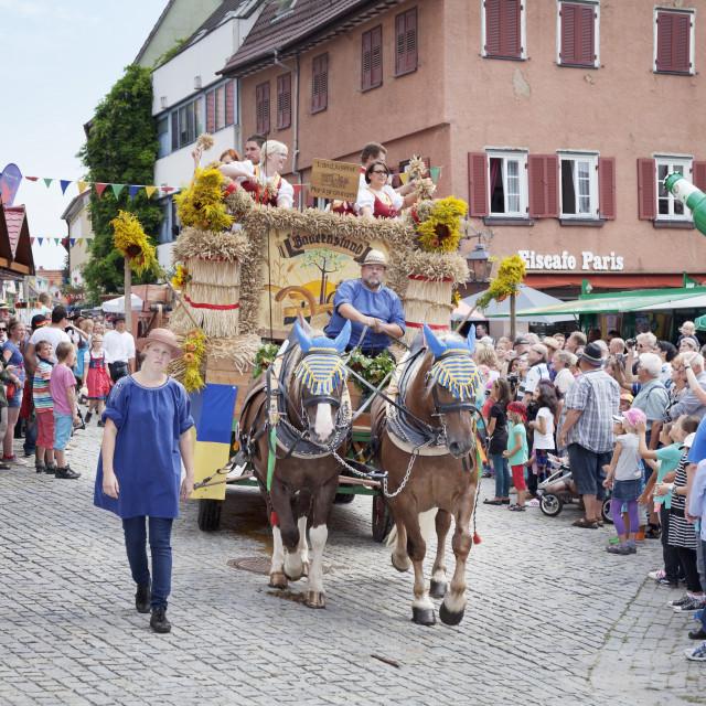 """Historical parade, Schaferlauf, Markgroningen, Baden Wurttemberg, Germany,..."" stock image"