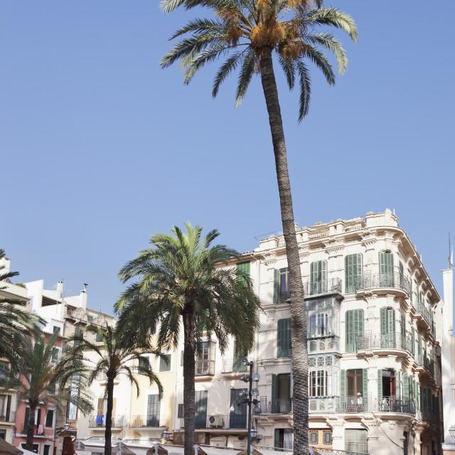 """""""Restaurants and street cafes at der Placa de la Llotja, Palma de Mallorca,..."""" stock image"""