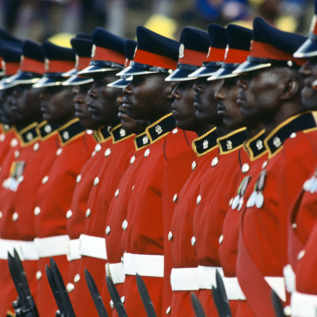 """""""Guard of Honour of soldiers standing to attention, Kenya"""" stock image"""