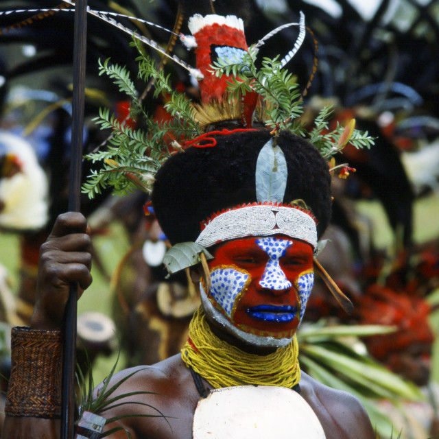 """""""Tribesman in war paints at gathering of tribes, Mount Hagen, Papua New Guinea."""" stock image"""