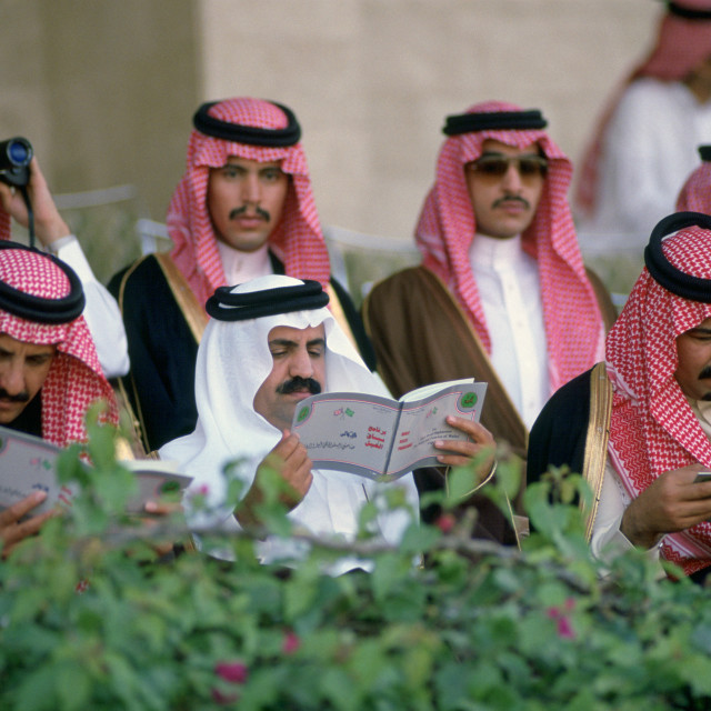 """Men watching horse racing at Riyadh Races, Saudi Arabia."" stock image"