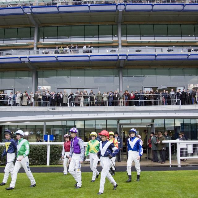 """Jockeys at Ascot Racecourse, Berkshire, England, United Kingdom"" stock image"