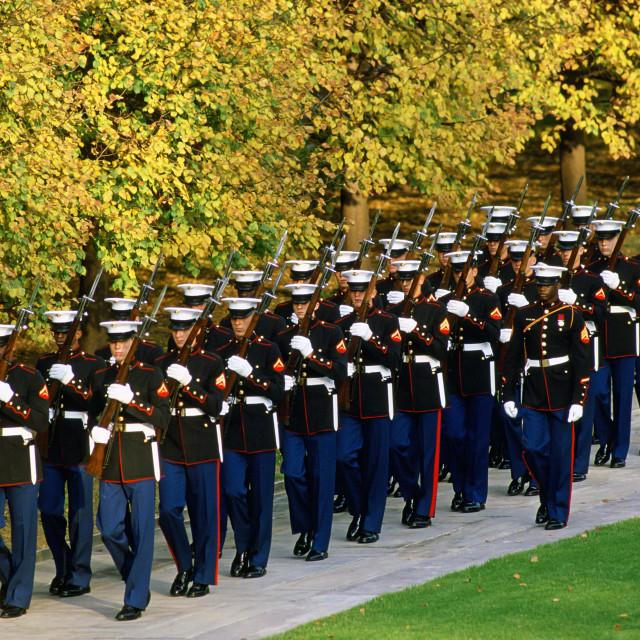 """U.S Military at Arlington National Cemetery in Washington."" stock image"