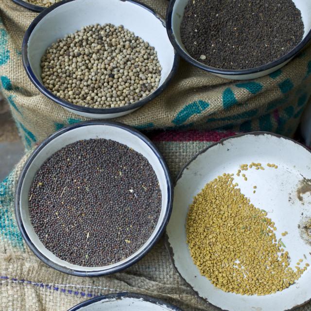 """Peppercorns, fenugreek, mustard at Khari Baoli Spice and Dried Foods Market..."" stock image"