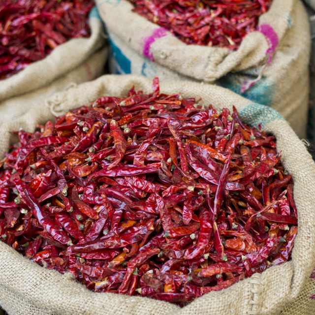 """""""Red chillies on sale at Khari Baoli spice and dried foods market, Old Delhi,..."""" stock image"""