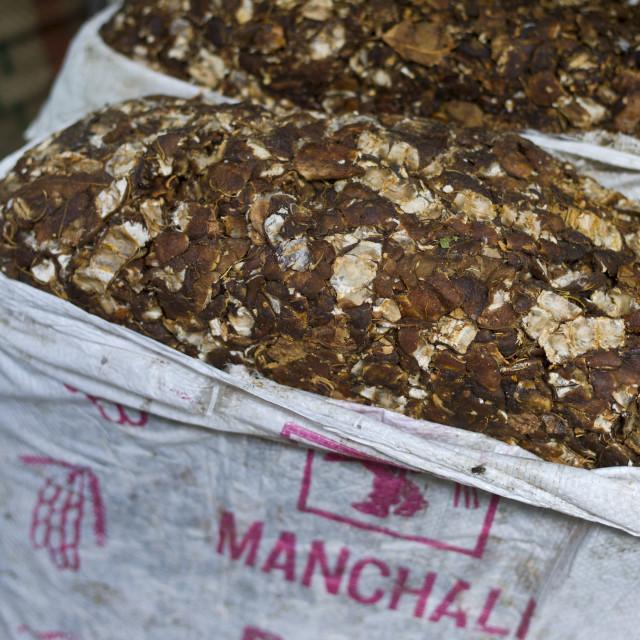 """Tamarind on sale at Khari Baoli spice and dried foods market, Old Delhi, India"" stock image"