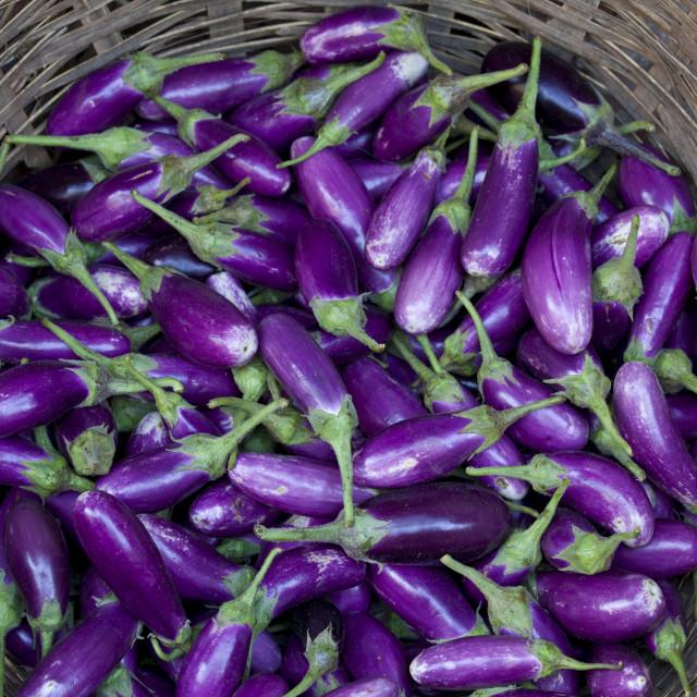 """Fresh aubergines on sale at market stall in Varanasi, Benares, India"" stock image"