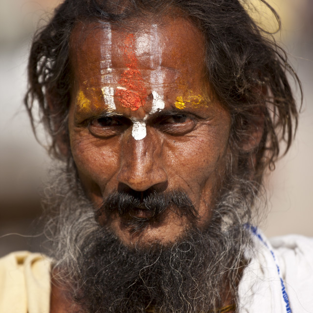 """Hindu Sadhu holy man with traditional markings in street in Nandi near..."" stock image"