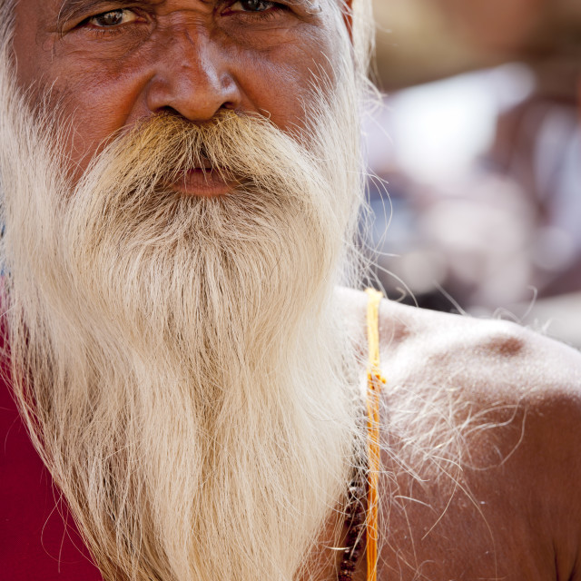 """Hindu Sadhu holy man with traditional markings of symbol of Shiva in street..."" stock image"