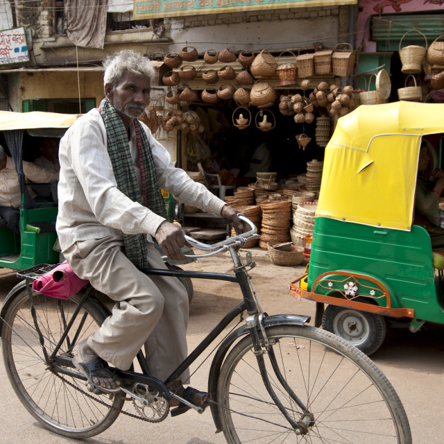 """Indian man riding bicycle street scene in city of Varanasi, Benares, Northern..."" stock image"