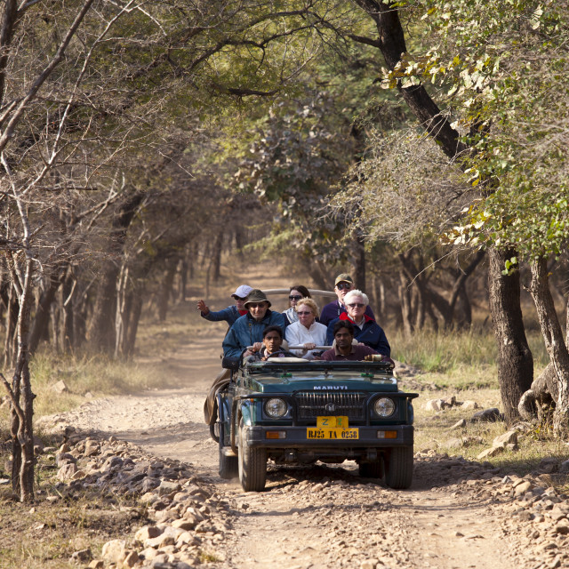 """Tour group of eco-tourists in Maruti Suzuki Gypsy King 4x4 vehicle in..."" stock image"