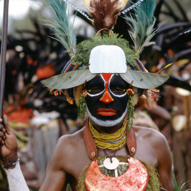 """""""Man at a Sing Sing tribal gathering Papua New Guinea, South Pacific"""" stock image"""