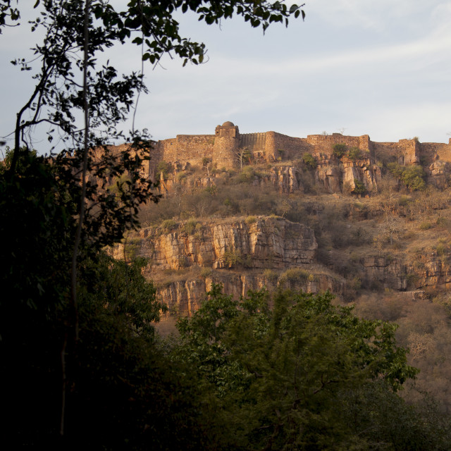 """""""Ranthambore Fort heritage site in Rajasthan, Northern India"""" stock image"""