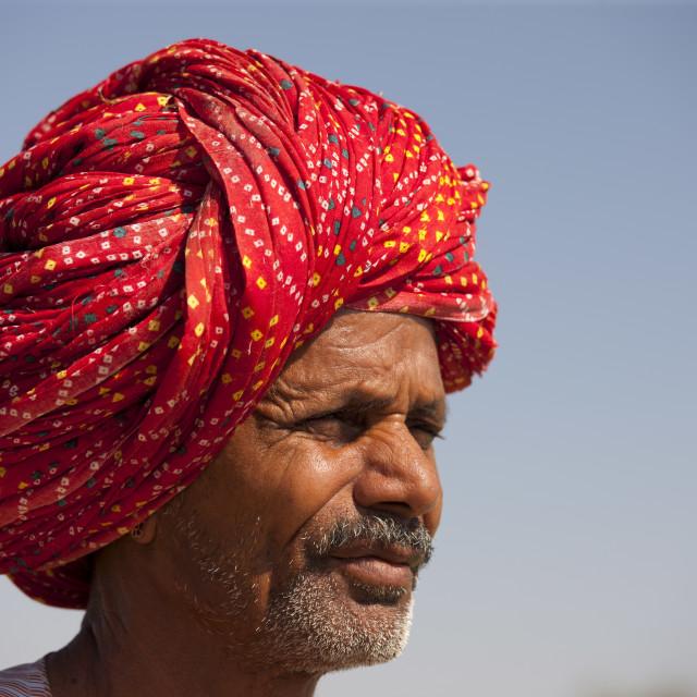 """Rajasthani farmer with traditional Rajasthani turban at Nimaj, Rajasthan,..."" stock image"