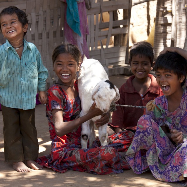 """Happy Indian children in typical Rajasthani village of Nimaj, Rajasthan,..."" stock image"