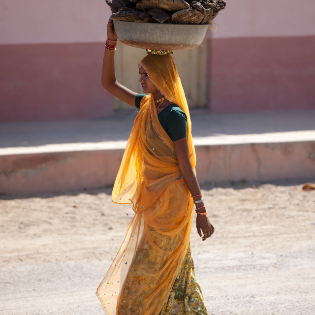 """""""Indian woman in sari carrying cow dung pats to dry for cooking fuel at Khore..."""" stock image"""