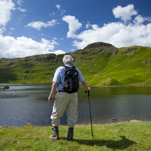 """Tourist on nature trail in lakeland countryside at Easedale Tarn lake in the..."" stock image"
