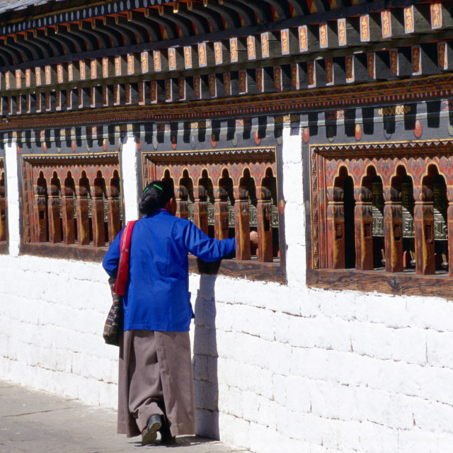 """Bhutanese woman touching prayer bells while praying at the Tashichho Dzong in..."" stock image"