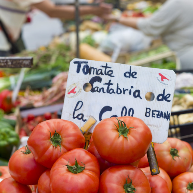 """Tomatoes of Cantabria on sale in food market in Santander, Cantabria,..."" stock image"