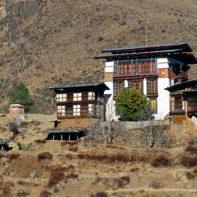 """A typical Bhutanese home built in a traditional chalet style to suit the..."" stock image"