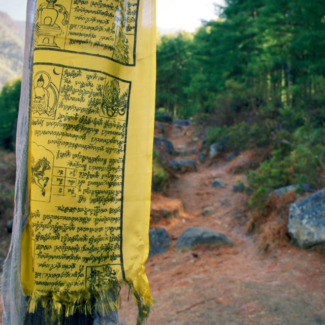 """""""Buddhist prayer flag on mountain path to Tak Tsang Monaster, Bhutan"""" stock image"""