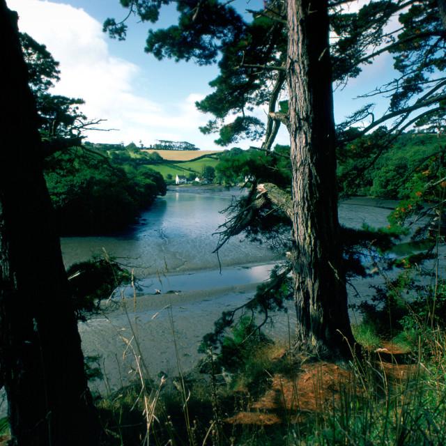 """Helford River Estuary, Cornwall, England"" stock image"