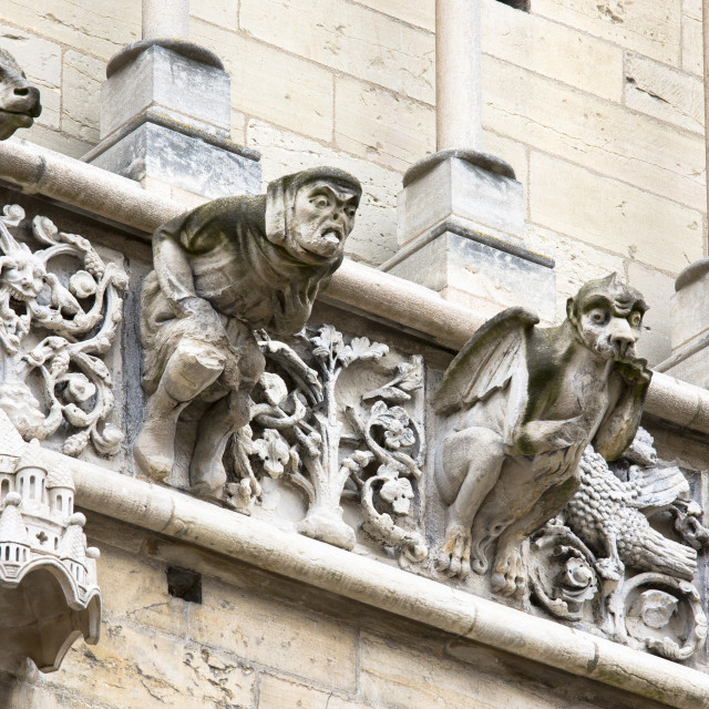 """Gargoyles at the Notre Dame Cathedral in Dijon in the Burgundy region,..."" stock image"