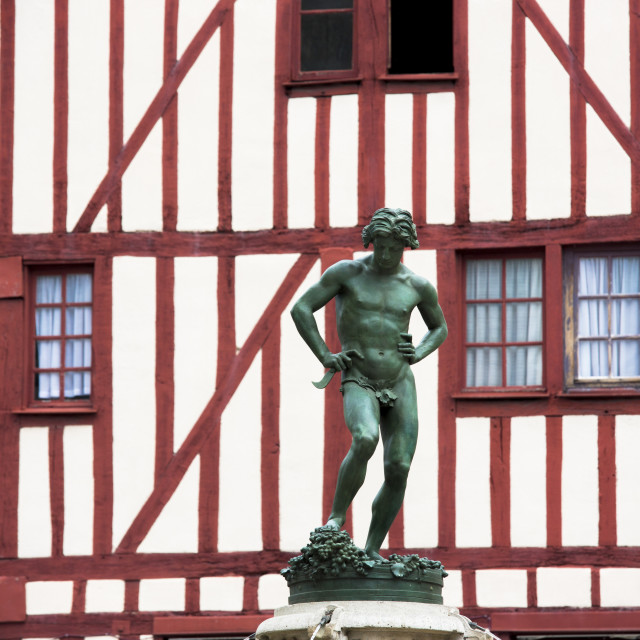 """""""Statue of Bareuzai in the old town in Dijon in the Burgundy region, France,..."""" stock image"""