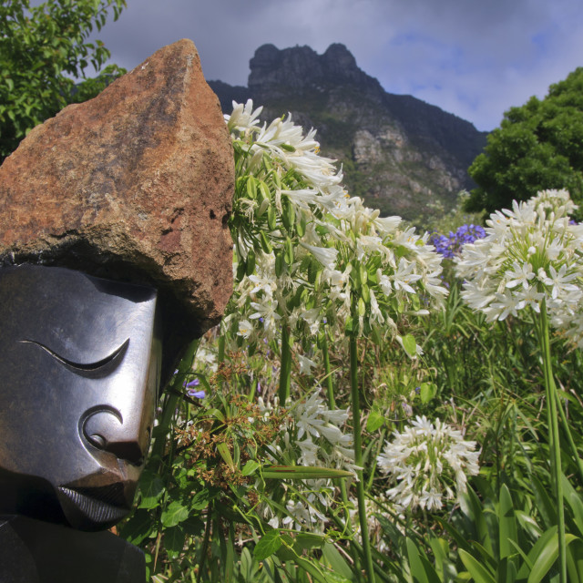 """""""Statue with agapanthus and Table Mountain behind, Kirstenbosch National..."""" stock image"""
