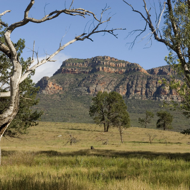 """Sandstone escarpment above Wilpuna Valley, Flinders Ranges National Park,..."" stock image"