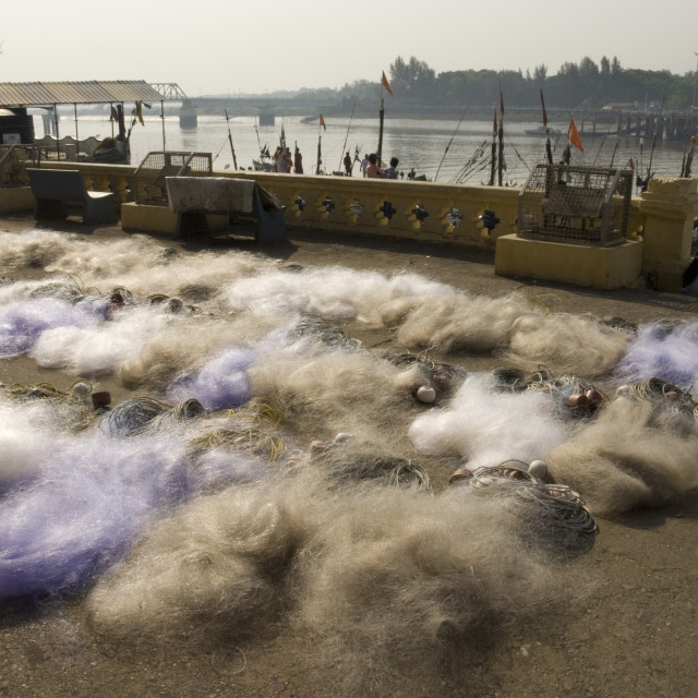 """Drying the nets at the fishing harbour on the Daman Ganga River, Daman,..."" stock image"